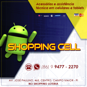 Shopping Cell